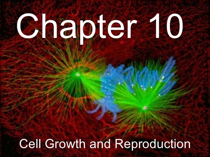 Chapter 10Cell Growth and Reproduction