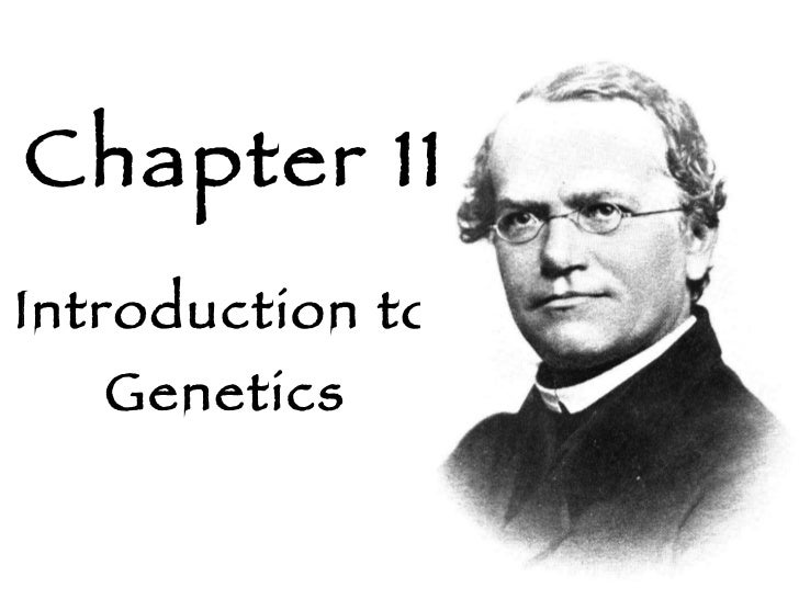 Biology Chapter 11 Introduction To Genetics Packet Answers
