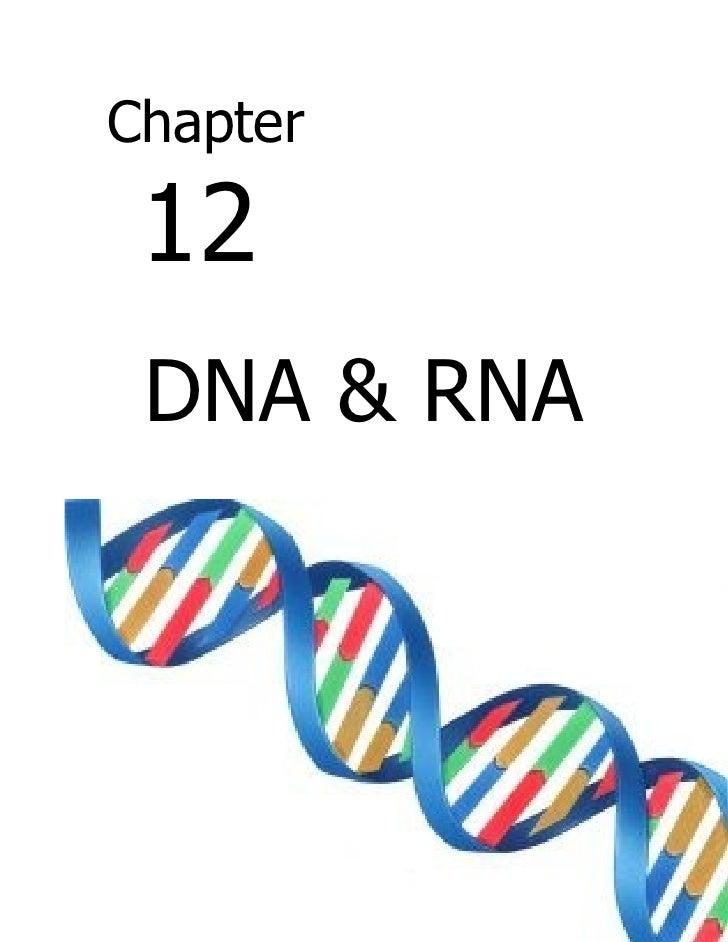 chapter 3 biology test
