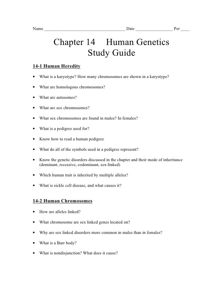 28+ [ 14 1 The Human Genome Guided Reading Answers 129699 ...