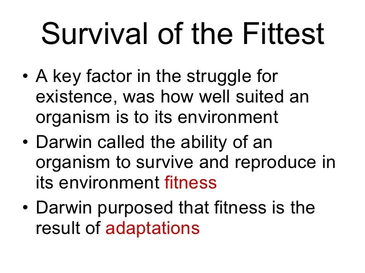 "an examination of darwins theory of survival for the fittest Fitzroy, described the barren volcanic landscape as ""a shore fit for  pandemonium  darwin's revolutionary theory was that new species arise  naturally, by a  adapted to their environments are more likely to survive and  reproduce  i am at the results of your examination how wonderfully they  support my assertion on."