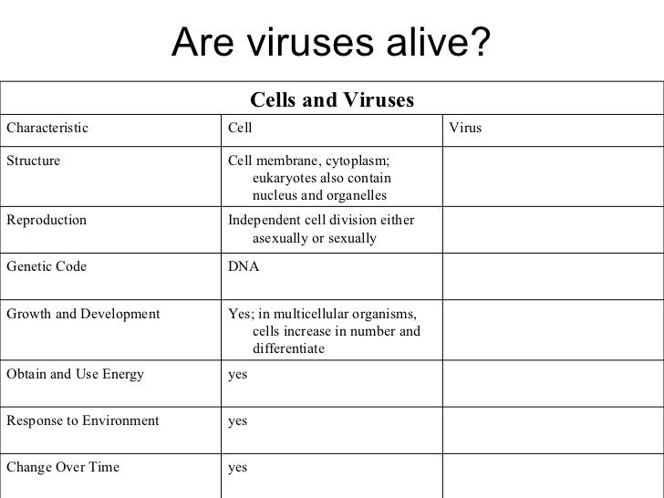 Printables Virus And Bacteria Worksheet virus and bacteria worksheet pichaglobal high school biology 1000 images about cells