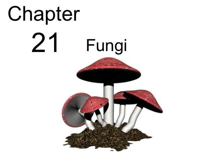 Biology - Chp 21 - Fungi - PowerPoint