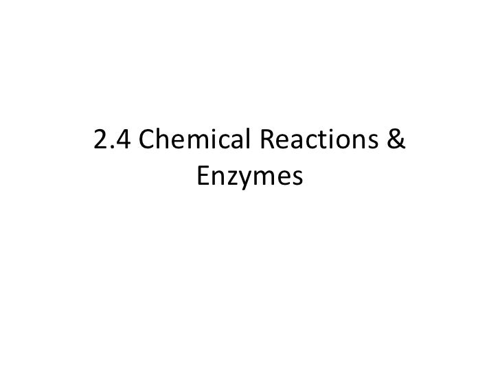 2.4 Chemical Reactions &       Enzymes