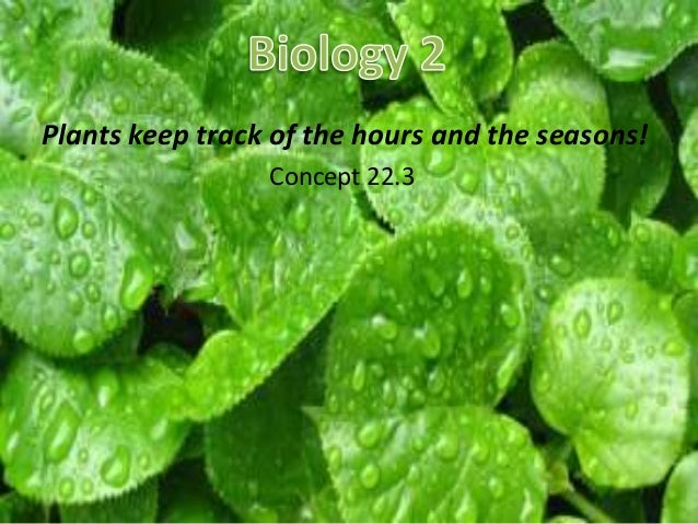 Plants keep track of the hours and the seasons!                 Concept 22.3