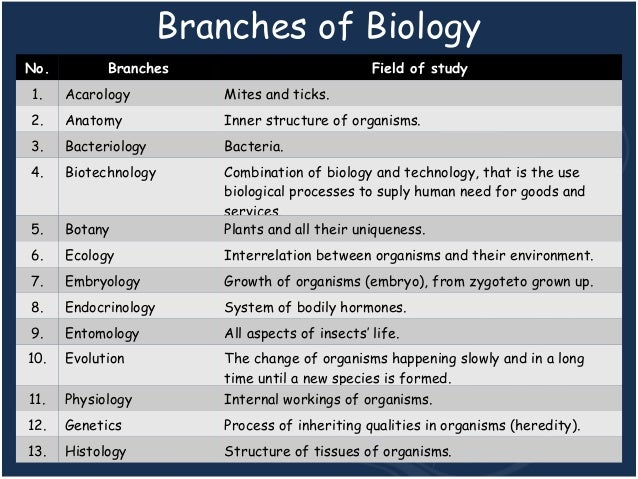 Role of bacteria in biotechnology