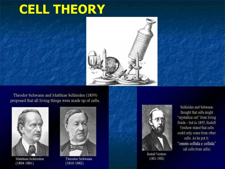 Biology Cell Theory