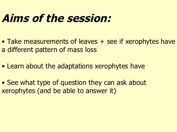 <ul><li>Aims of the session: </li></ul><ul><li>Take measurements of leaves + see if xerophytes have a different pattern of...