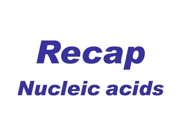 Recap  Nucleic   acids