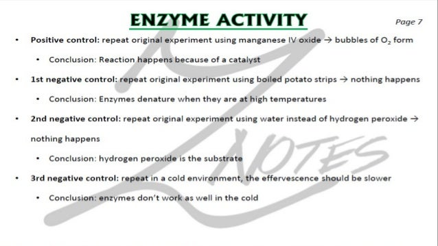 CIE IGCSE Biology flashcards