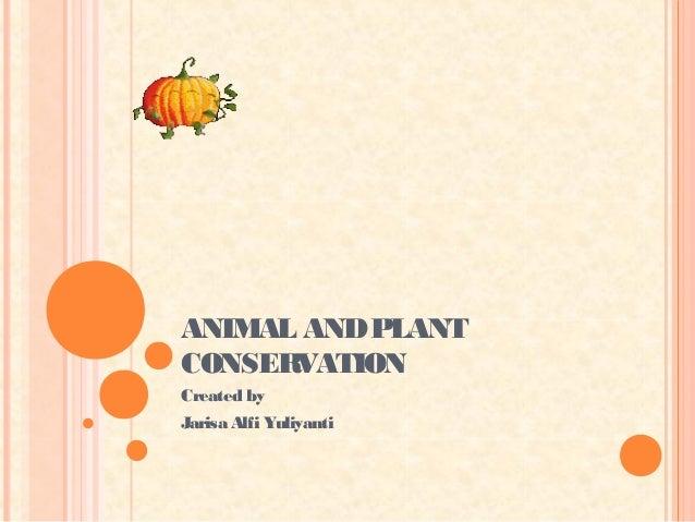ANIMAL AND PLANTCONSERVATIONCreated byJarisa Alfi Yuliyanti