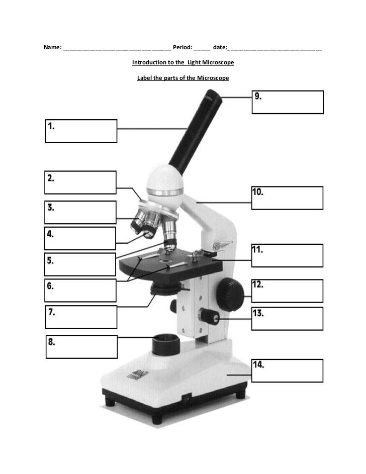 Biology label part of microscope