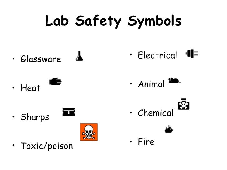 Printables Science Safety Symbols Worksheet science safety rules worksheets sewing ruleselementary biology lab safety