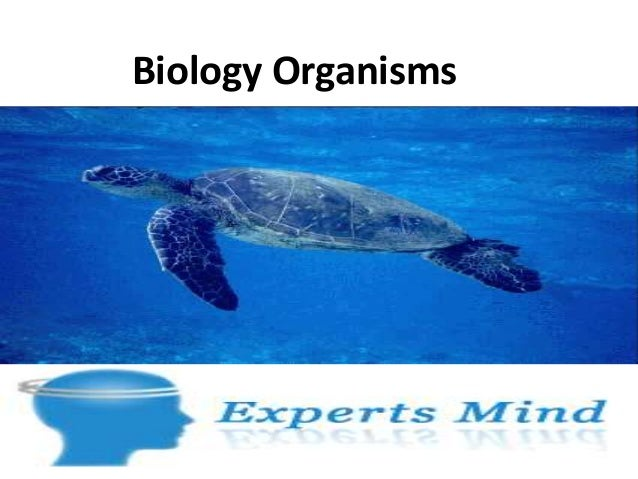 Biology organisms