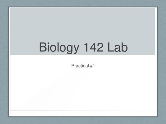 Biology practical #1 (part 1)
