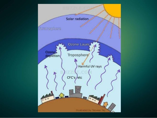 the ozone depletion phenomenon Read how certain clouds affect ozone depletion and more 2017 — 'ozone depletion is a well-known phenomenon and tell us what you think of sciencedaily.
