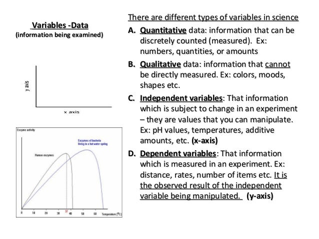 A  Quantitative data  Qualitative Data Examples Biology