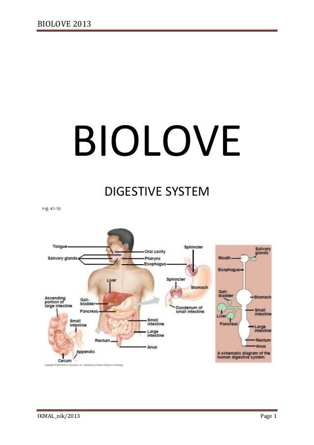 BIOLOVE 2013           BIOLOVE                 DIGESTIVE SYSTEMIKMAL_nik/2013                      Page 1