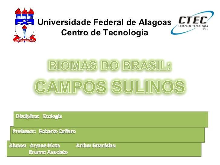 Universidade Federal de Alagoas Centro de Tecnologia