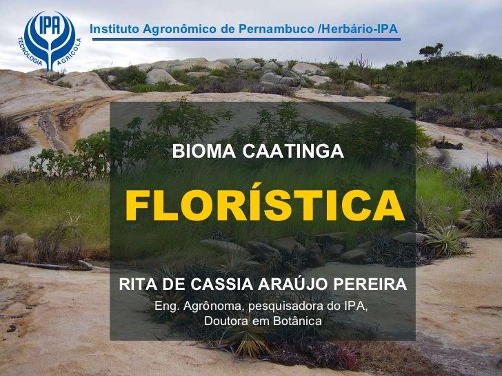 Bioma caatinga florística rita de cássia ipa