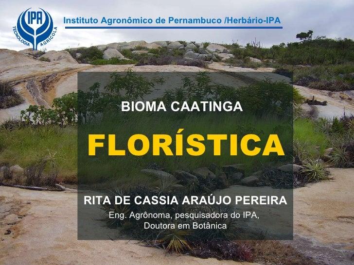 Instituto Agronômico de Pernambuco /Herbário-IPA FLORÍSTICA BIOMA CAATINGA RITA DE CASSIA ARAÚJO PEREIRA Eng. Agrônoma, pe...