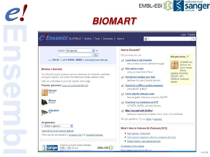 BIOMART          1 of 38