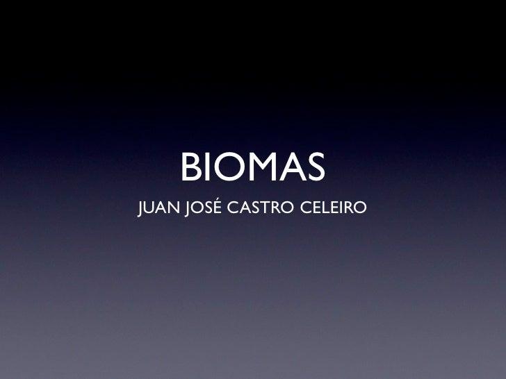 BIOMAS JUAN JOSÉ CASTRO CELEIRO
