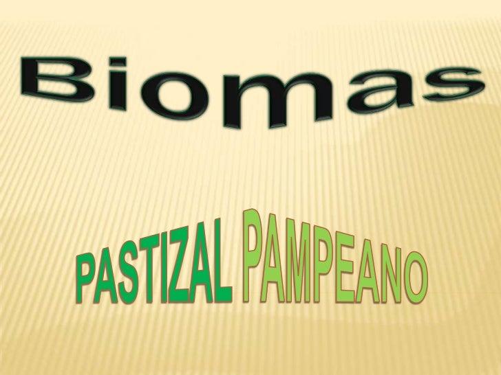 Biomas<br />PASTIZALPAMPEANO<br />