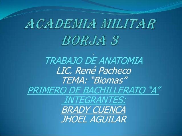 """.   TRABAJO DE ANATOMIA     LIC. René Pacheco      TEMA: """"Biomas""""PRIMERO DE BACHILLERATO """"A""""       INTEGRANTES:      BRADY..."""