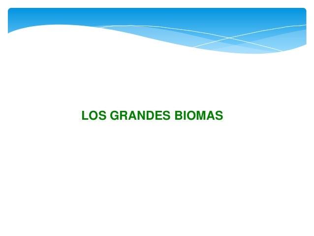 LOS GRANDES BIOMAS