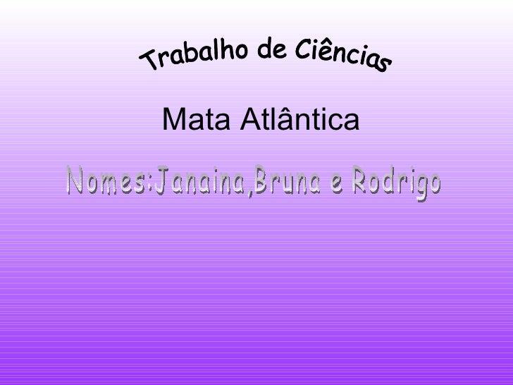 Mata Atlântica Trabalho de Ciências Nomes:Janaina,Bruna e Rodrigo