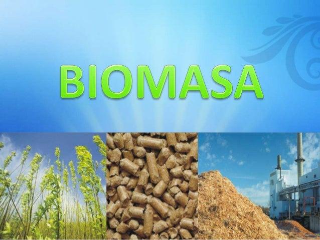¿QUÉ ES LA BIOMASA?  Es renovable  Materia viva  Produce combustible  La biomasa es toda aquella materia orgánica tanto an...
