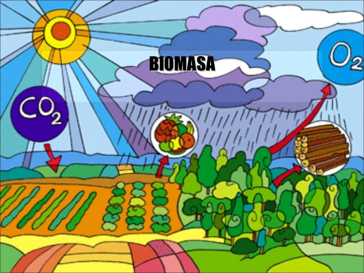 Biomasaluis...........