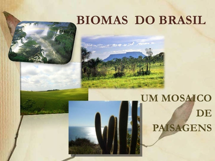 Biomas do brasil (Prof° Elves Alves)