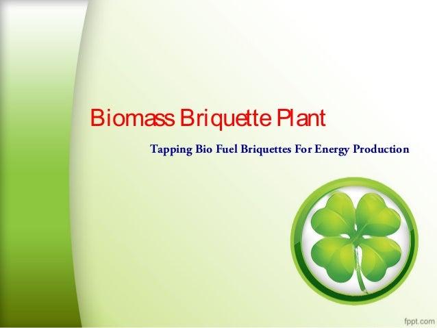 Biomass Briquette Plant Tapping Bio Fuel Briquettes For Energy Production