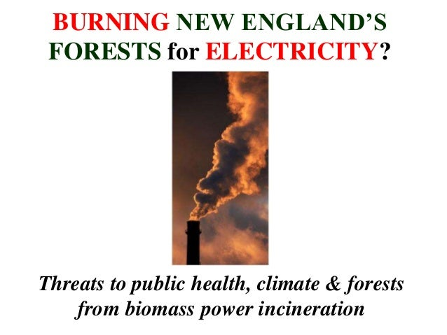 BURNING NEW ENGLAND'S FORESTS for ELECTRICITY? Threats to public health, climate & forests from biomass power incineration