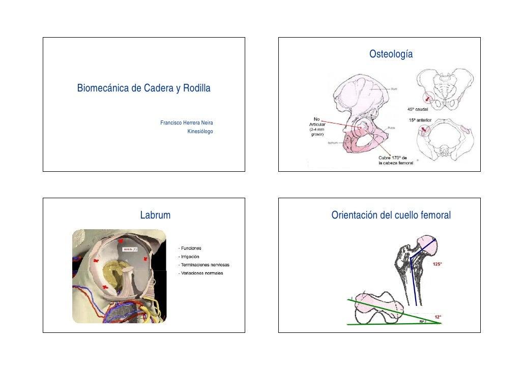 Biomecanica Cadera Y Rodilla Inicio