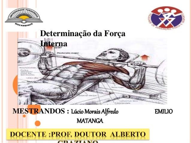 MESTRANDOS : Lúcio Morais Alfredo EMILIO MATANGA Determinação da Força Interna