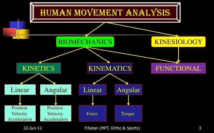experiment 2 kinematics on human motion Laboratory experiments 1 measurement of kinematics of finger motion during typing exercise 2 me 57700 kinematics and dynamics of human motion 2.