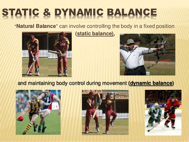 biomechanics is cricket Biomechanics of cricket bowling recently i came across something on cricket bowling in my old departmental files that may be of interest toanyone who lives in the cricket playing countries of the world.