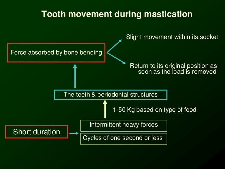 Slight Tooth Movement Tooth Movement During