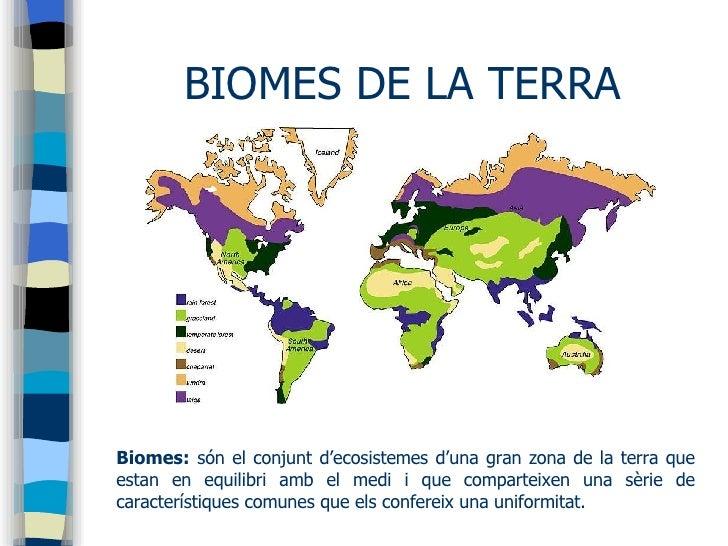 Biomes Intertropical