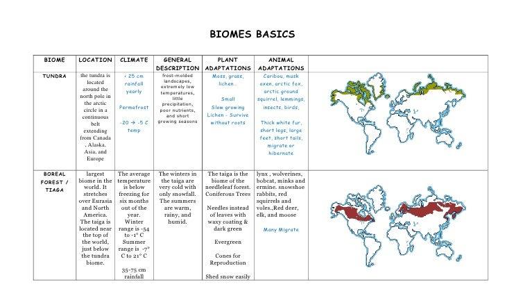 Biomes basics