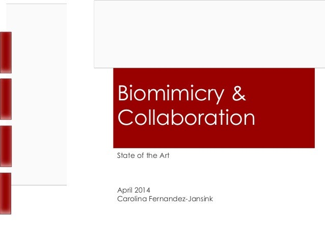 Biomimicry & Collaboration State of the Art April 2014 Carolina Fernandez-Jansink