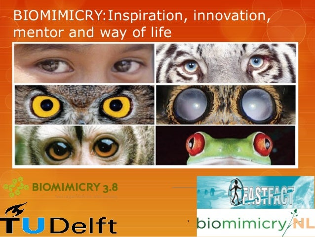 BIOMIMICRY:Inspiration, innovation,mentor and way of life                       ,