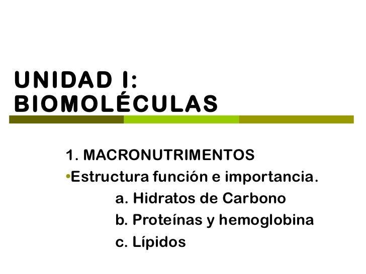 UNIDAD I:BIOMOLÉCULAS   1. MACRONUTRIMENTOS   ●    Estructura función e importancia.          a. Hidratos de Carbono      ...