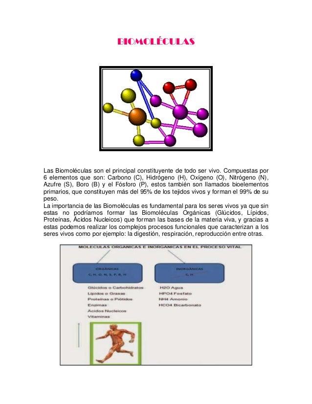 BIOMOLÉCULAS  Las Biomoléculas son el principal constituyente de todo ser vivo. Compuestas por 6 elementos que son: Carbon...