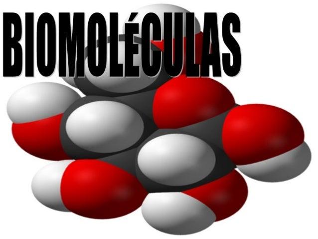 BiomoléculasSon moléculas complejas que constituyen a losorganismos vivos.Hay cuatros grandes grupos:Hidratos de carbono...