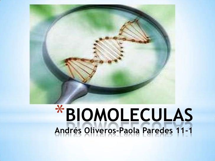 BIOMOLECULASAndrés Oliveros-Paola Paredes 11-1  <br />