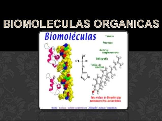 BIOMOLÉCULAS ORGÁNICAS Las moléculas orgánicas están formadas por cadenas de carbono y se denominan Glúcidos, Lípidos, Pró...